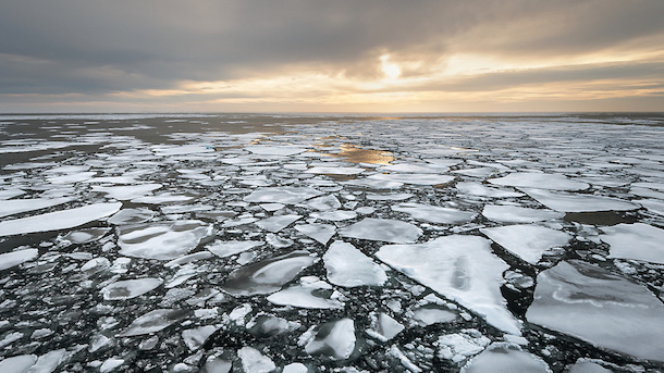 photo : Mark Meyer - Greenpeace